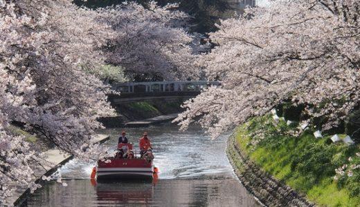 【松川観光遊覧船】お花見シーズンがベストです!松川べりの桜を堪能してきました!