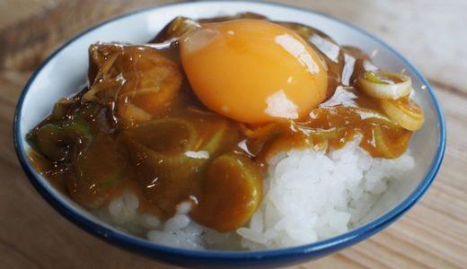 【吉宗@高岡】今年の麺食い初めは・・濃厚カレーうどんと茶碗カレー!