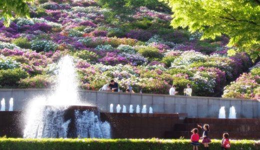 【西山公園@福井県鯖江市】つつじまつりに行ってきた!