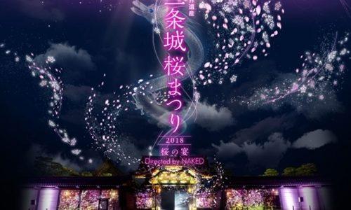 東寺と二条城の夜桜ライトアップ