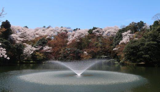 平成最後のお花見は高岡古城公園がおすすめ!そして令和元年の秋のビッグイベントも~♪