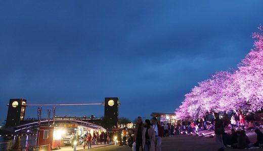 【富岩運河環水公園】世界一美しいスタバがある富山の夜桜の代表的スポット!